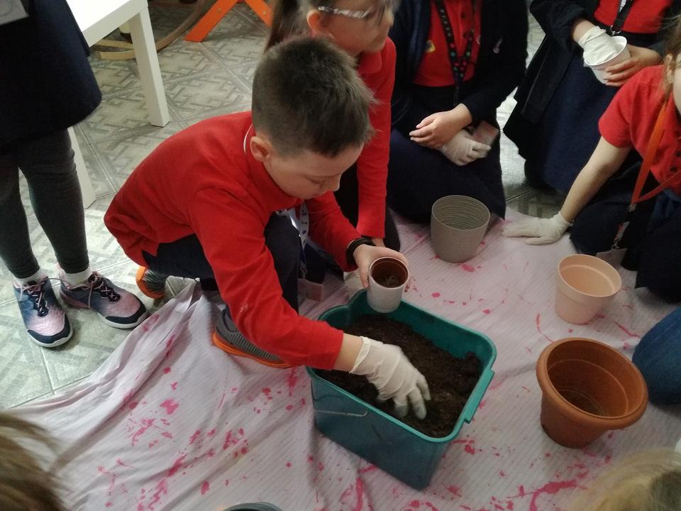 Organic classroom