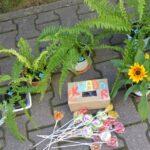 Kiermasz kwiatek dla Ekwadoru