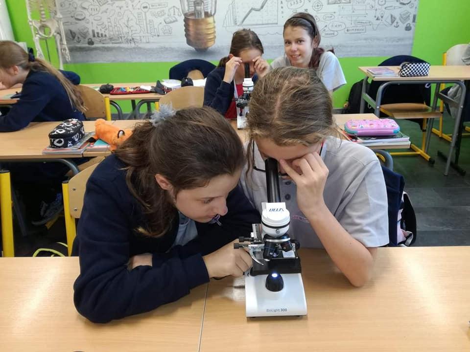 Obserwacje mikroskopowe